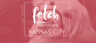 2019 Fetch DVM360 Kansas City August 24 – 26