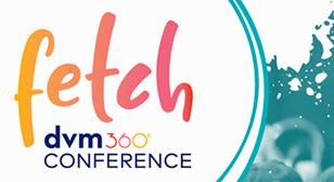 PVM headed to FETCH 2020